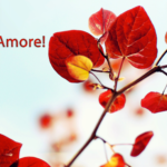 amore1920x1080